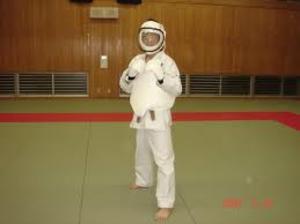 Karate_purotect