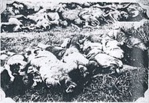 Massacred_corpses_of_japanese_victi