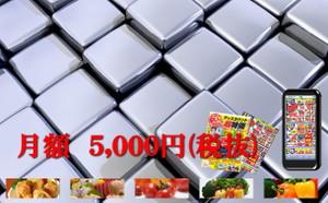 Japan55com_hp_chirashi07