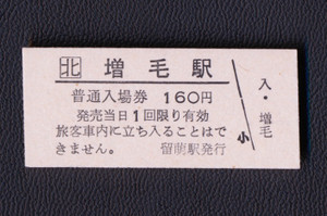 Masike_ticket_20140201215939cbd