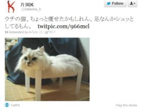 Kinoko69244_tumblr_m21pkkk8ud1qz64n